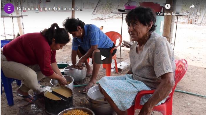 Comunes de la costa d'Equador