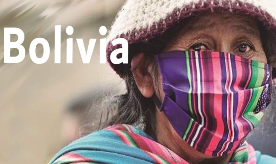 """VIDEOCONFERÈNCIA """"BOLIVIA. ENTRE EL GOLPE DE ESTADO Y LA PANDEMIA"""", Martín Bazurco Osorio (Antropòleg)"""